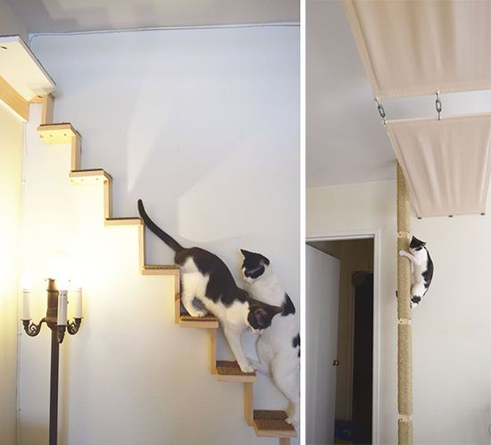 Beautiful cat shelves modular cat climbing system from ailuros workshop is a perfect fit for dczubvo