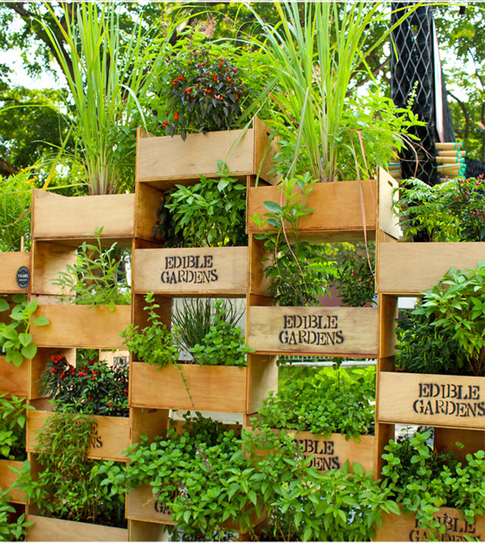 Best 26 creative ways to plant a vertical garden - how to make a hvubwrp