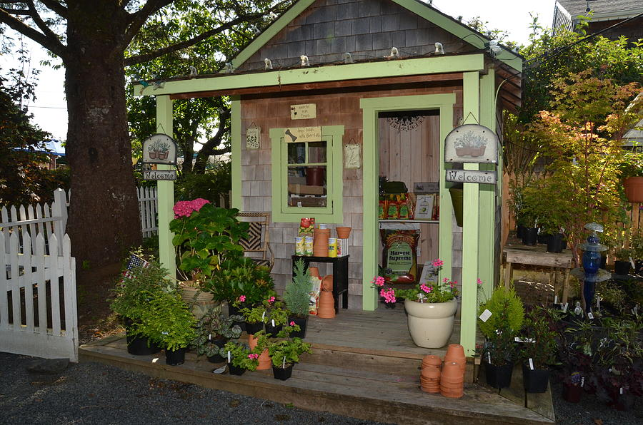 Creative shed photograph - potting shed by chuck overton hmqrtrz