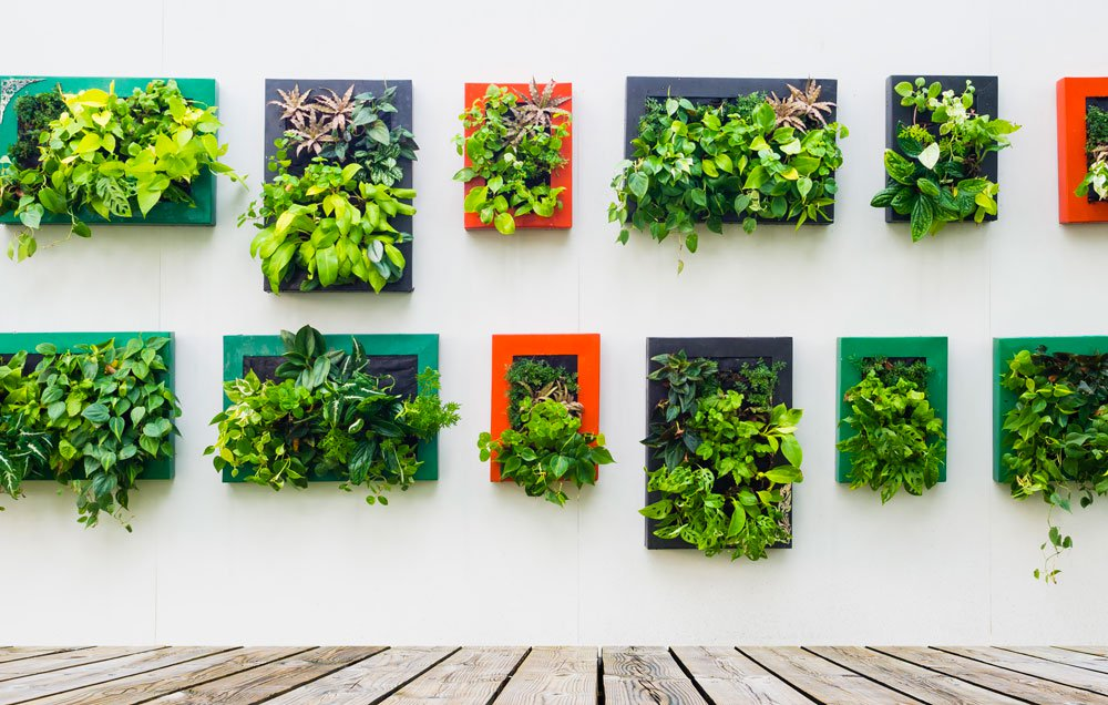 Excellent 3 ways to build an epic vertical garden anywhere | rodaleu0027s organic life gxvpteh