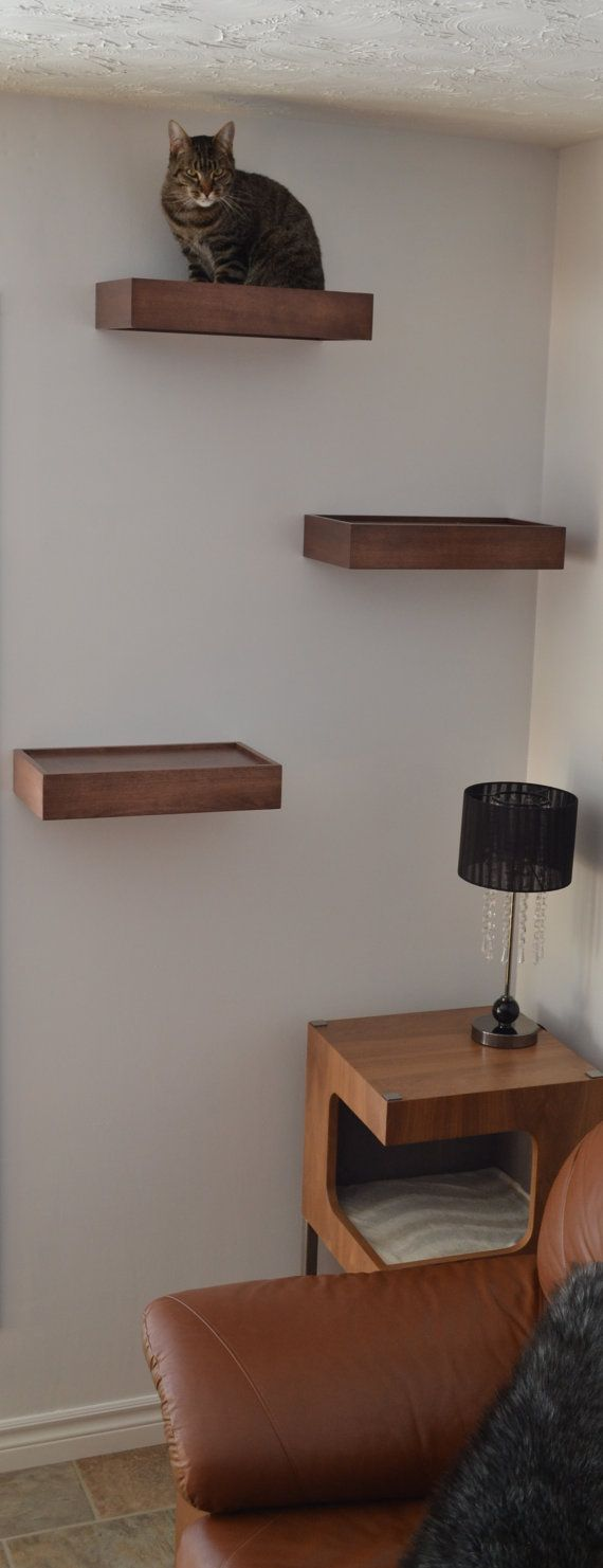 New cat shelves cat wall shelf cat wall perch package of three by huvecollection udglpeb
